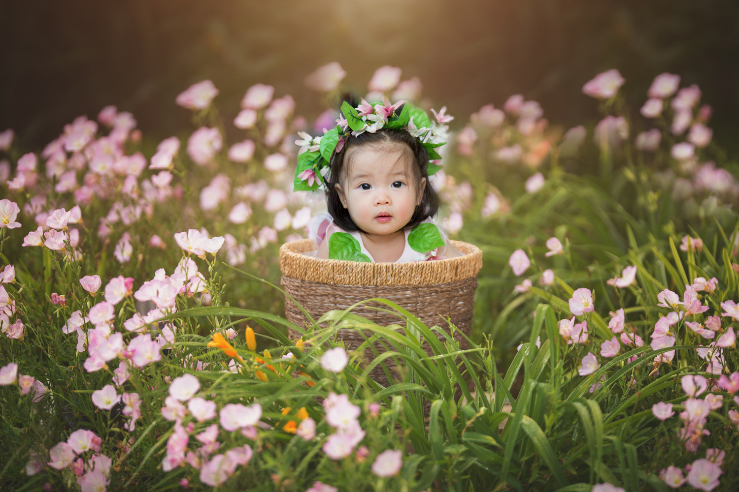 Flower Girl Baskets Sydney : In bloom photo finish photography north sydney